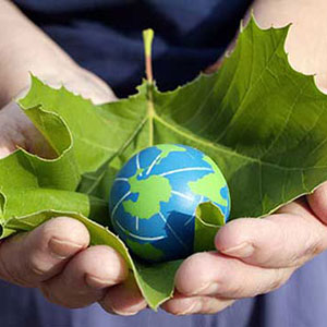 Commitment To The Environment Globe
